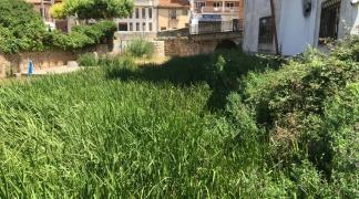 El grupo municipal de Izquierda Unida denuncia el estado de abandono de las riberas de los ríos en los tramos urbanos que recorren el municipio.